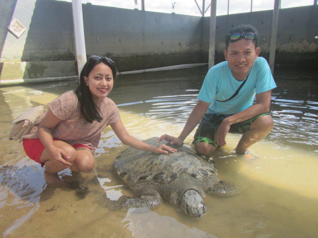 turtle island at pandawa marine adventure bali