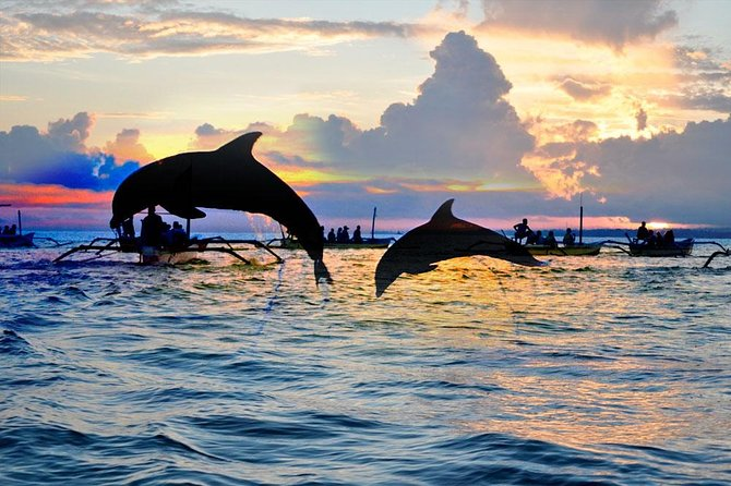 dolphin tour at pandawa marine adventure bali